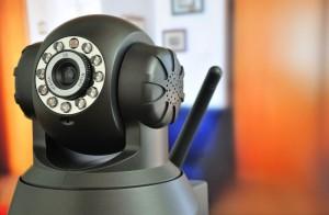Webcam um den Hund zu beobachten