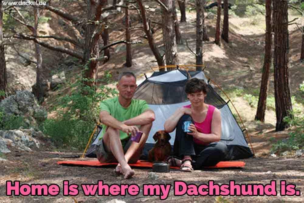Ein Familien-Campingplatz mit Dackel