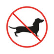 No dogs sign on the white background.